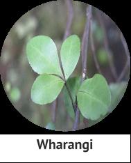 wharangi