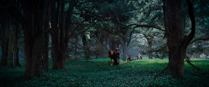 lotr1-movie-screencaps.com-4943-Wanderingwillie