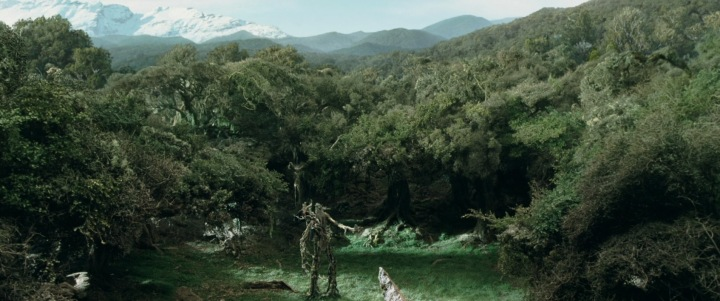 lotr2-movie-screencaps.com-18563-ent council
