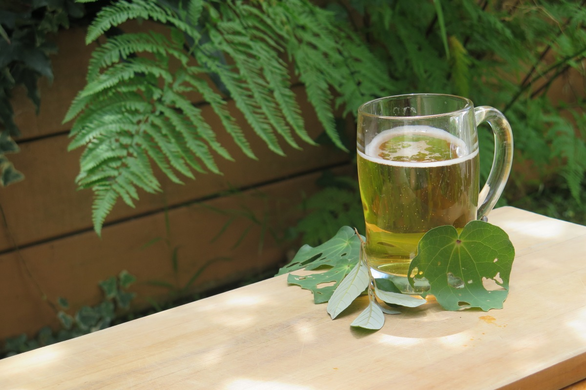 A Guide to New Zealand Plant Beers, Wines & Spirits