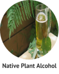 Native Plant Alcohol